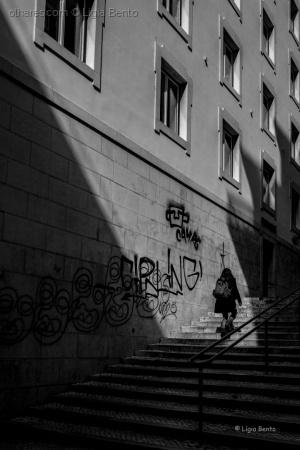 /caminho entre a luz e as sombras ....