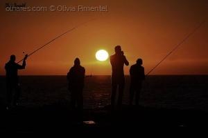 /Uns pescam outros fotografam!