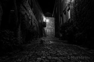 /gato branco em pedra escura