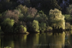 Paisagem Natural/EmPaz©