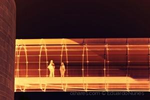Arte Digital/MatriX©