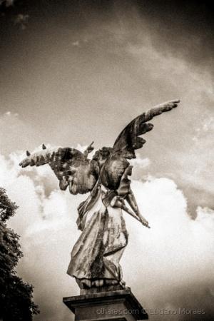 Outros/Série Angels