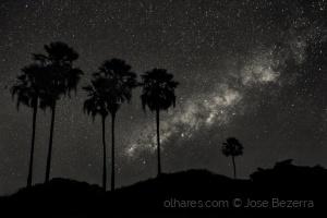 Fotojornalismo/As estrelas no sertão...