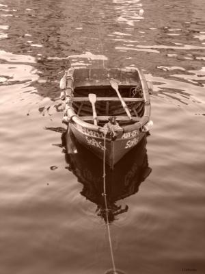 /Bote de Salvação