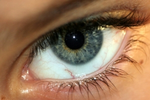 /olho de falcão