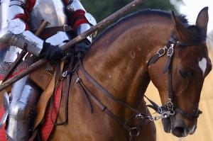 /O cavalo e o cavaleiro