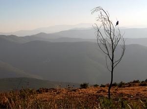 /Serra do Açor