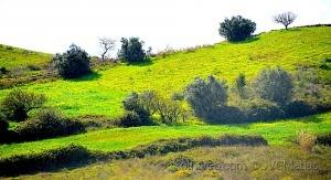 Outros/As nossas belas paisagens- 3!