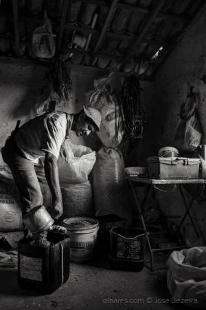 Fotojornalismo/Vaqueiro da região central