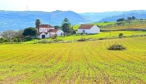 Outros/As nossas belas paisagens- 4!