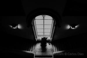 Abstrato/Dark Steps