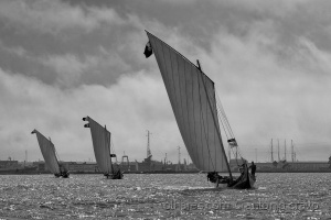Gentes e Locais/regata da ria (2010)