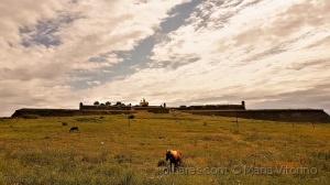 História/Forte de Santa Luzia (ler sff)