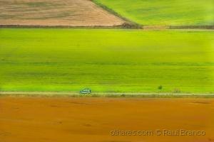 Paisagem Natural/Viajando no campo!