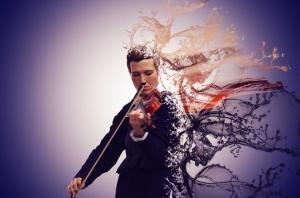 /A violonista