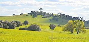 Outros/As nossas lindíssimas paisagens!