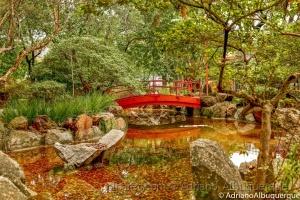 Paisagem Urbana/Jardim Japones.