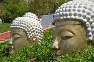 Outros/Uma grande viagem ao mundo Budista