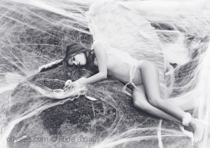 Outros/Fallen Angel (on the web)