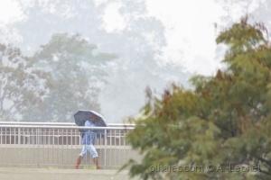Paisagem Urbana/Enfrentando a chuva