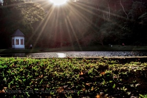 /Sol de Outono - Feliz Aniversário Nova Friburgo!