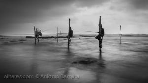 /Pescadores de luar