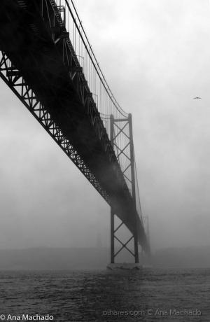 /Ponte 25 abril com nevoeiro I