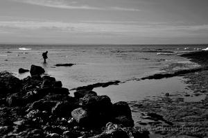 Paisagem Natural/Viver na e da costa