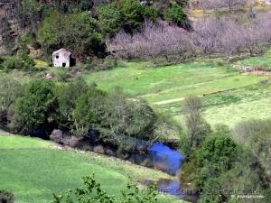 Paisagem Natural/natura - vale do Rio Dão