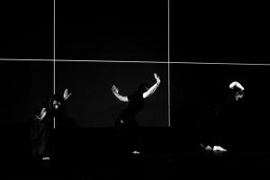 Espetáculos/Butoh #3 Coliseu de Lisboa (descrição)