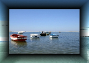 Gentes e Locais/Algarve - Ria Formosa