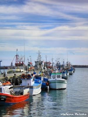 /Peniche - Porto de Pesca