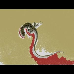 /lizard