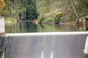 Paisagem Natural/rio