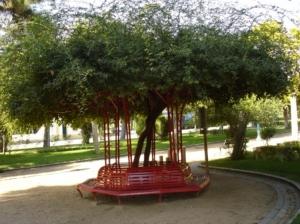 /Jardim de Elvas
