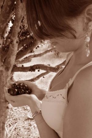 Gentes e Locais/Delicioso pomar...