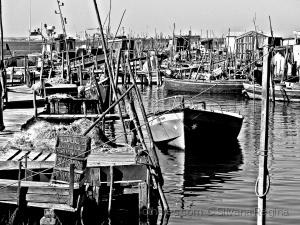Gentes e Locais/Nas  margem do estuário do rio Sado