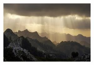 Paisagem Natural/chuva de luz e árvore em coração.