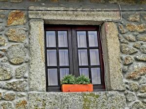 /A janela, o vaso e o fio!