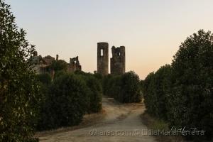 /Castelo de Montemor-o-Novo