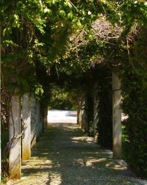 Outros/Entrada de Jardim