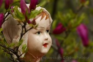 /A princesa do jardim