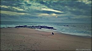 Paisagem Natural/Pescador de sonhos ...