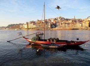 /a luz divina em Porto