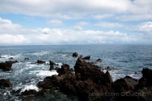 Paisagem Natural/entre a terra e o mar
