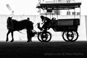Paisagem Urbana/o cavalo impaciente ...