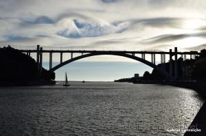 Paisagem Urbana/Ponte da Arrábida ( Anoitecer )
