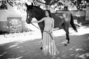 Moda/Horse