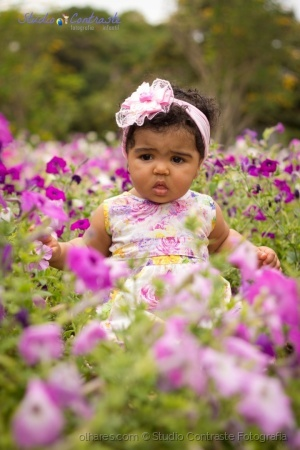 Retratos/Uma linda flor no jardim
