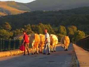 /Sunset - Fim do dia na aldeia!